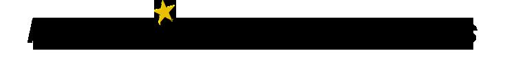 Polestar Logo small